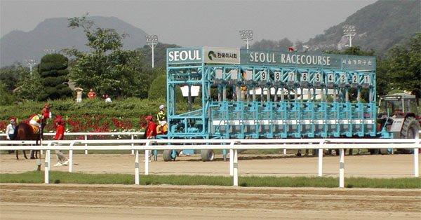Seoul Racecourse in Korea