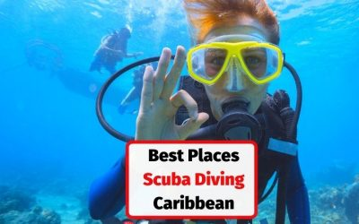 Top 5 Islands for Scuba Diving in the Caribbean