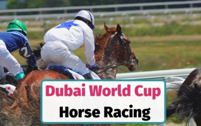 Dubai World Cup Horse Racing Guide for Sports Fans