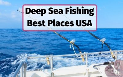 10 Best Places to go Deep-Sea Fishing in the USA